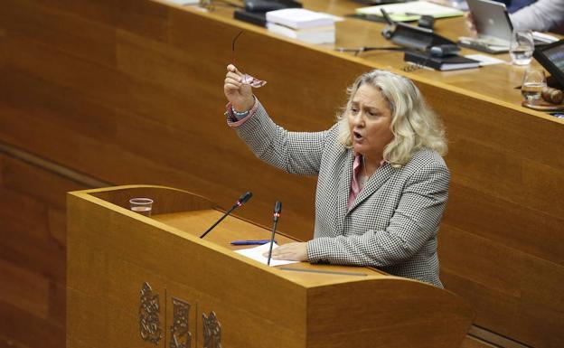 El pp denuncia la oficina de derechos ling sticos ante for Oficina proteccion datos