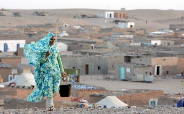 Tinduf La Alerta De Atentado Yihadista No Frena La Visita De 73 Valencianos A Campamentos De Refugiados Saharauis En Tinduf Las Provincias