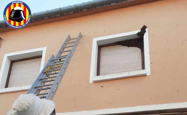 Los bomberos sacan un enjambre de la ventana de una casa.  / Bomberos